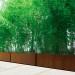 bambu Pflanztrog